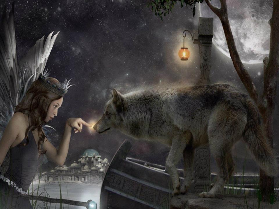как фото ангелы с волками красивые всемирно известный